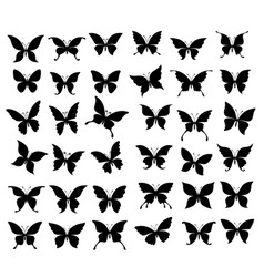 butterflies and moth insect black silhouettes vector image