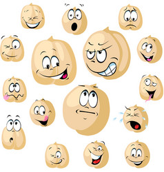 chickpea seeds cartoon funny with vector image