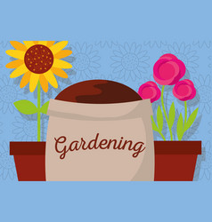 Gardening banner with sack soil flowers roses and vector