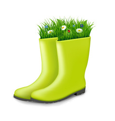gumboots with grass vector image