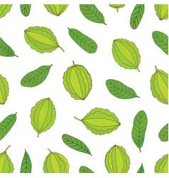 Hand drawn seamless pattern a medicinal plant vector