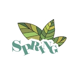 Spring hand drawn and doodles elements vector image