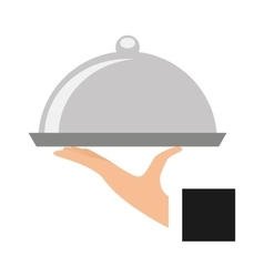 tray server dish isolated icon vector image