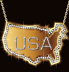 usa gold vector image