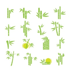 Bamboo symbol icons set vector image vector image