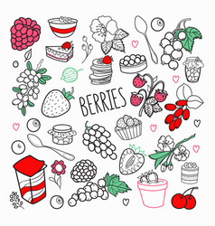 berries hand drawn doodle outline berry set vector image
