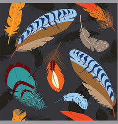 bird feathers vector image