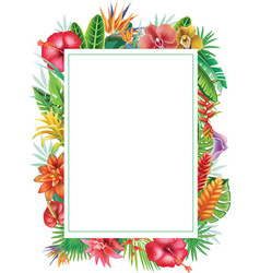 Frame from tropical plants vector