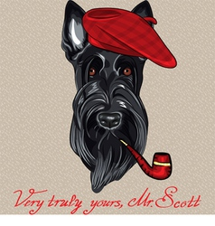hipster dog Scottish Terrier vector image