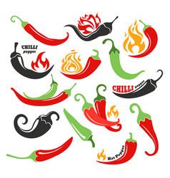 Hot chilli pepper in fire set vector