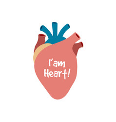 human heart isolated on white vector image