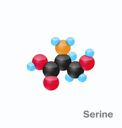 Molecule of serine ser an amino acid used in the vector