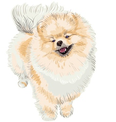 Pedigreed dog vector