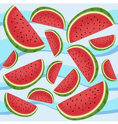 Watermelon Slice Wave vector image