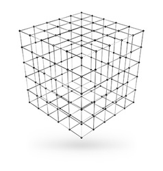 wireframe polygonal geometric element cube vector image