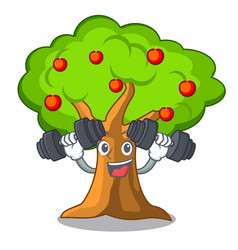 Fitness apple orchard with basket of cartoon vector