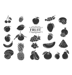 fruit glyph icons set vector image