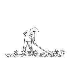 peasant in vietnamese hat works on field hand vector image