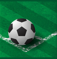 soccer on field at corner vector image