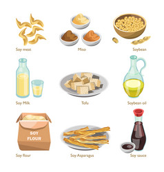 Soy containing products colorful poster on vector
