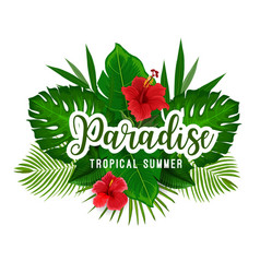 tropical palm and flower poster for summer holiday vector image