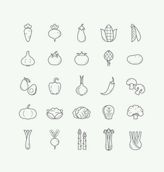 vegetable veggies thin line icons set vector image