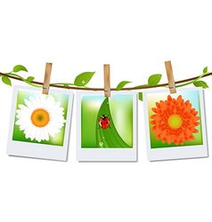 Photo frames with nature image vector