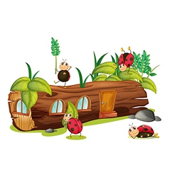 Ladybugs and a house vector image