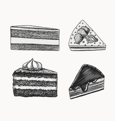 birthday cake fruit dessert or tart hand drawn vector image