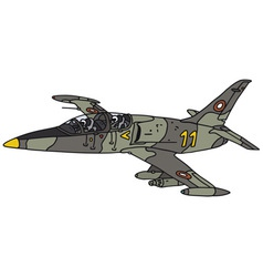 Camouflage jet aircraft vector