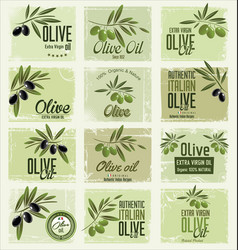 Olive retro labels collection vector
