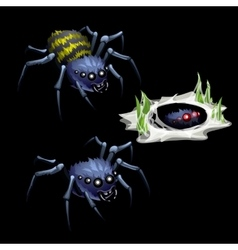 Two spider and grass in web vector