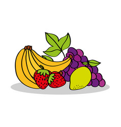 banana strawberry lemon grapes fruits food vector image