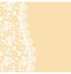 lace border vector image vector image