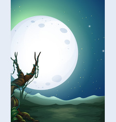 a beautiful landscape at night vector image