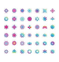 abstract elegant flower logo icon design vector image