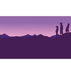 At night meerkat landscape silhouette vector image