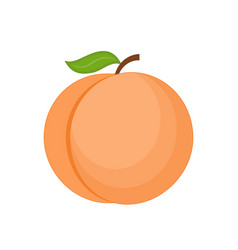 Cartoon peach isolated on vector