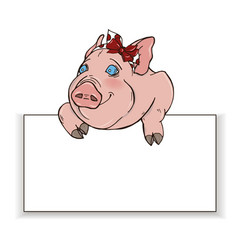 curious pig peeps out from behind a white rectangl vector image