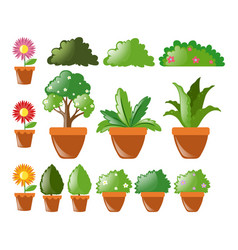 Different kinds of plants in pot vector