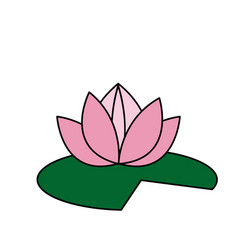 Lotus flower pink green leave decorative element vector