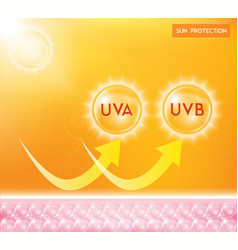 Uv protection or ultraviolet sunblock vector