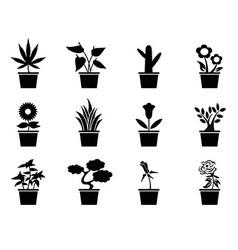 pot plants icons set vector image vector image