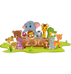 collection of zoo animals vector image