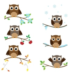 Owls on branches vector image vector image