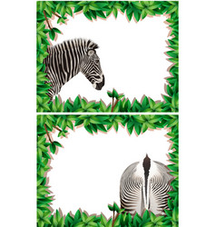 a set of zebra on nature frame vector image