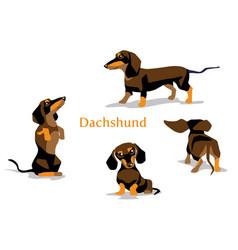 dachshund black vector image