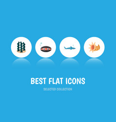 Icon flat nature set of seashell cockleshell vector