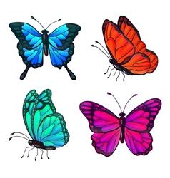 Set colorful realistic butterflies vector