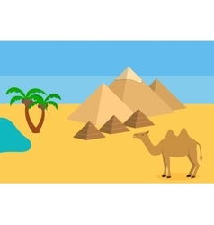 Camel in Sahara desert with the pyramids and palm vector image vector image